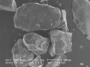 ESEM picture of dry SAP particles produced by bulk polymerization