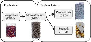 Holistic modelling approach for special concrete: from fresh- to hardened-state